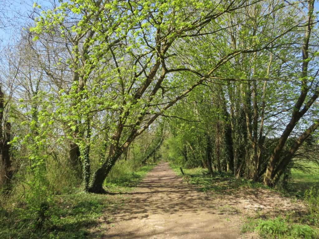 Disued_Railway,_footpath,_Itchen_Abbas_3482