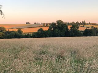 Itchen_Valley_view_3165