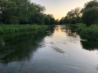 The_River_Itchen_3167